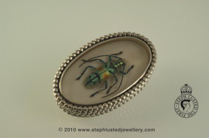 Beetle Music Box Brooch