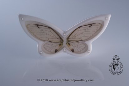 Cicadia Wing Butterfly Brooch
