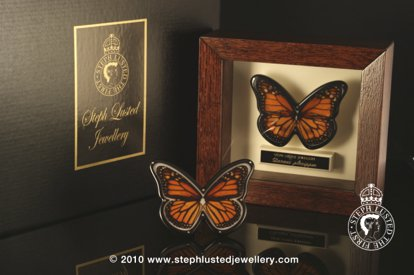 Butterfly Brooch in Cabinet