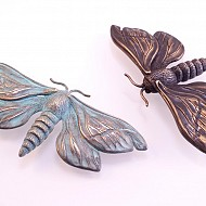 Puriri Moth - Bronze