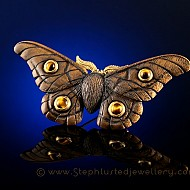 Emperor Gum Moth - Tiger's Eye